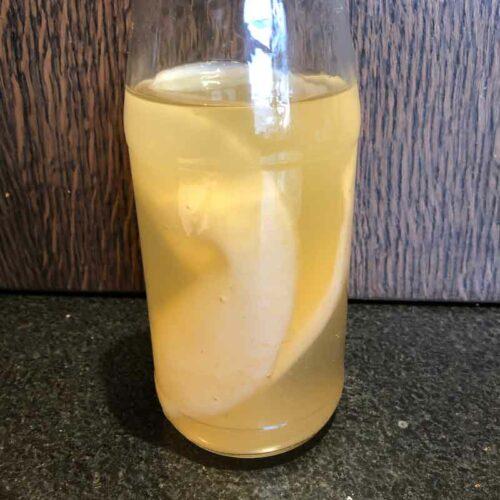 Kombucha – F1 eerste fermentatie